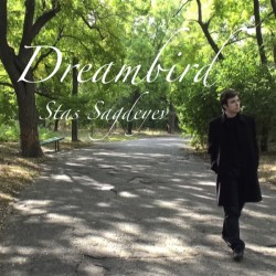 New single 'Dreambird'
